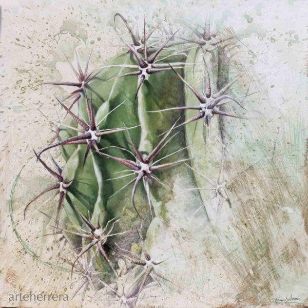 002 terra seca cactus fernando garcia herrera