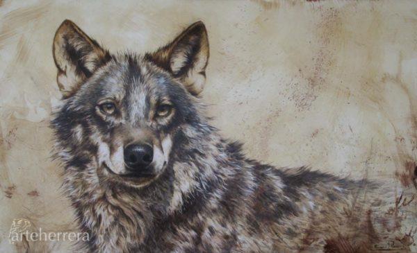 lobo-wolf-herrera