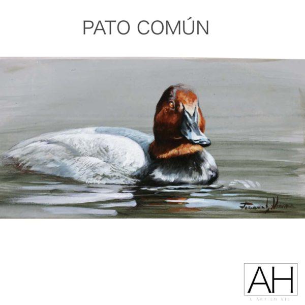 006 pato comun fernando garcia herrera