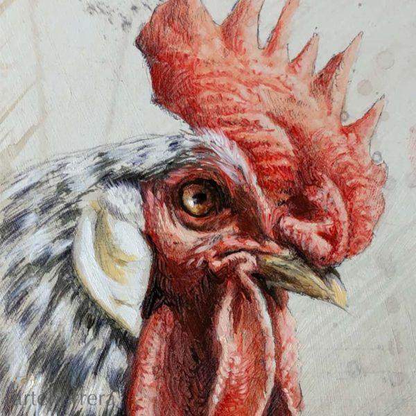 008 2 estudio gallo fernando garcia herrera