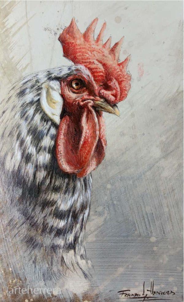 008 estudio gallo fernando garcia herrera
