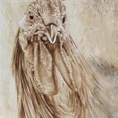 015 gallo fernando garcia herrera