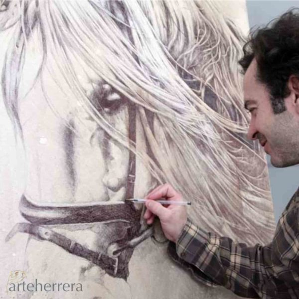 032 1 estudio caballo fernando garcia herrera
