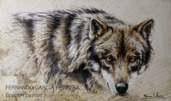 035 lobo fernando garcia herrera