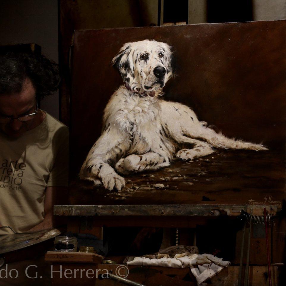 Retrato «Dorian», setter