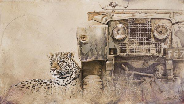 trust-leopardo-africa-landrover-herrera