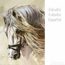 ESTUDIO CABALLO