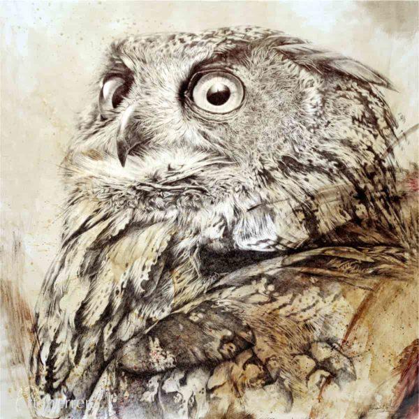 lamina buho real owl arteherrera