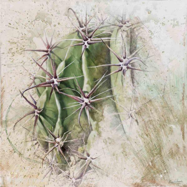 lamina cactus terra seca arteherrera