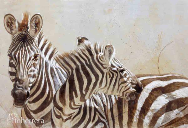 lamina cebras africa arteherrera