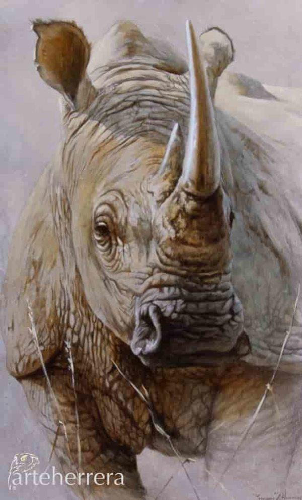 rino africa bigfive herrera