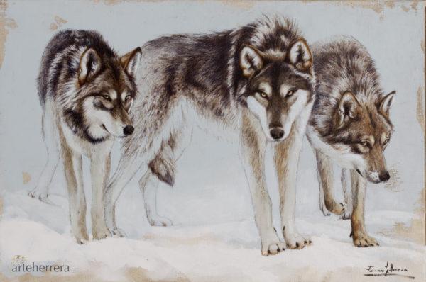 lobos noruega herrera arteherrera