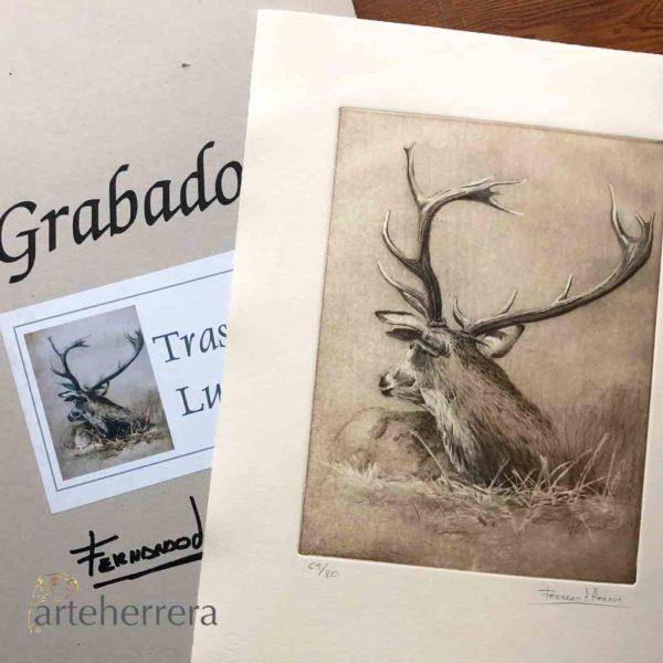 venado caza arteherrera ciervo carpeta grabado