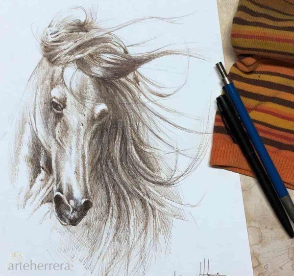 boceto caballo dibujo arteherrera