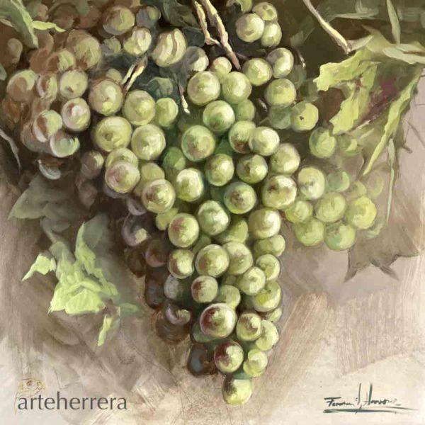 uvas blancas bodegon arteherrera