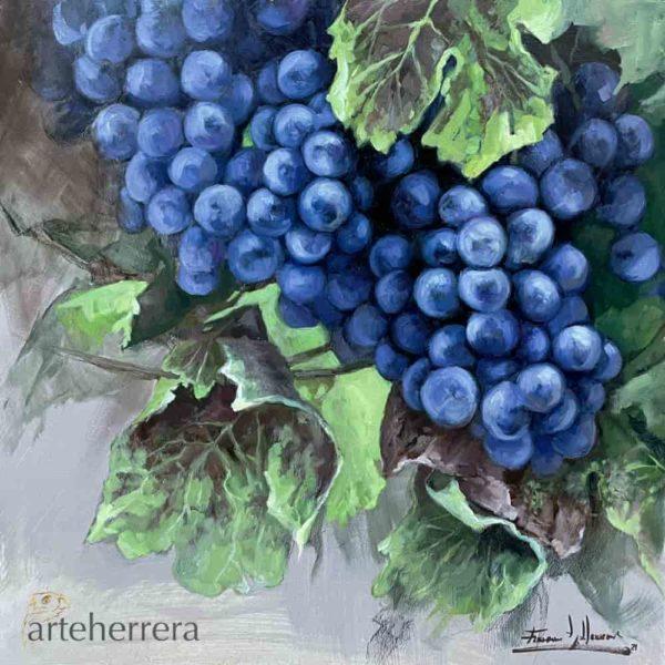 uvas negras bodegon arteherrera