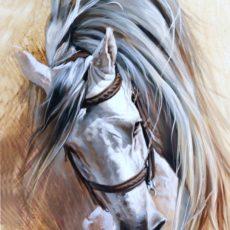 Horse Avra