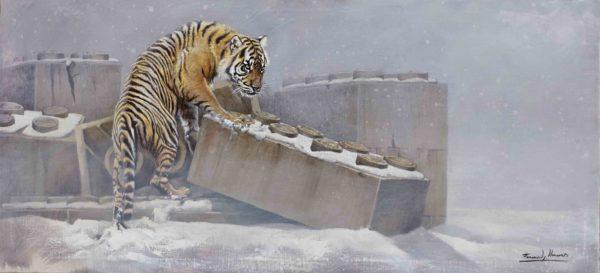 tigre herrera wildlife portada