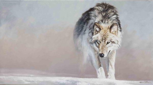 lobo solitario wolf herrera