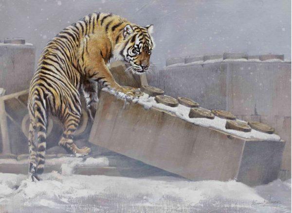 Puzzle-tigre-arteherrera