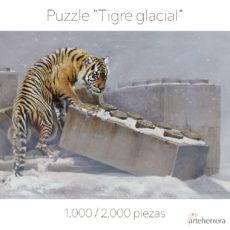 Puzzle Tigre glacial