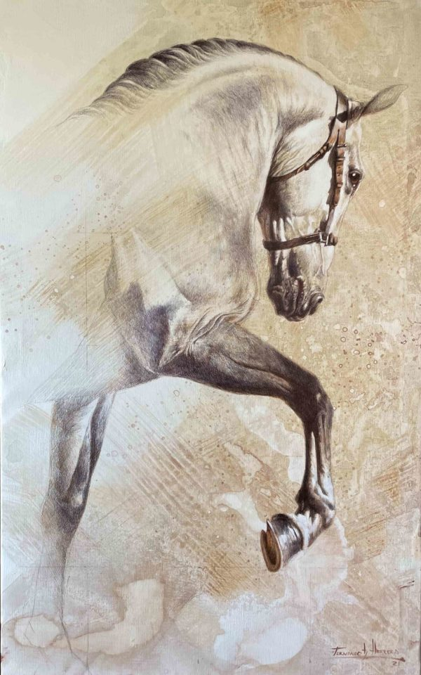 caballo herrera dibujando top